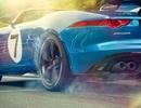 Project 7 - Xóa bỏ hình ảnh Jaguar già nua